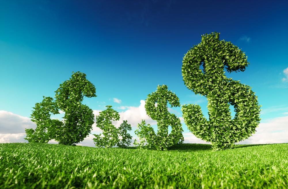 Tributação Verde: a base para uma mudança profunda e necessária