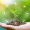Sustentabilidade comprovada: Alcoa, CBA e Hydro recebem certificação internacional ASI