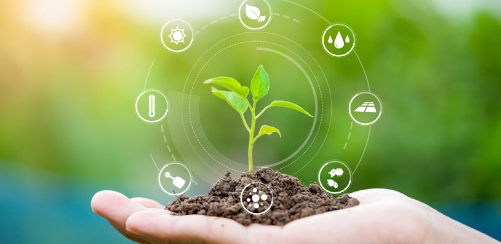 Hands holding seedlings, Modern agriculture with technology concept