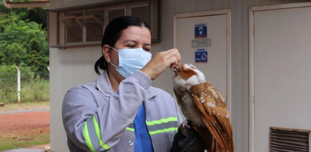 Veterinária do CRAS realiza atendimento na unidade. Foto-Oslan Silva (1)