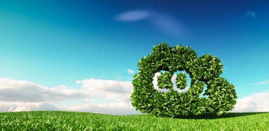 precificacao de carbono