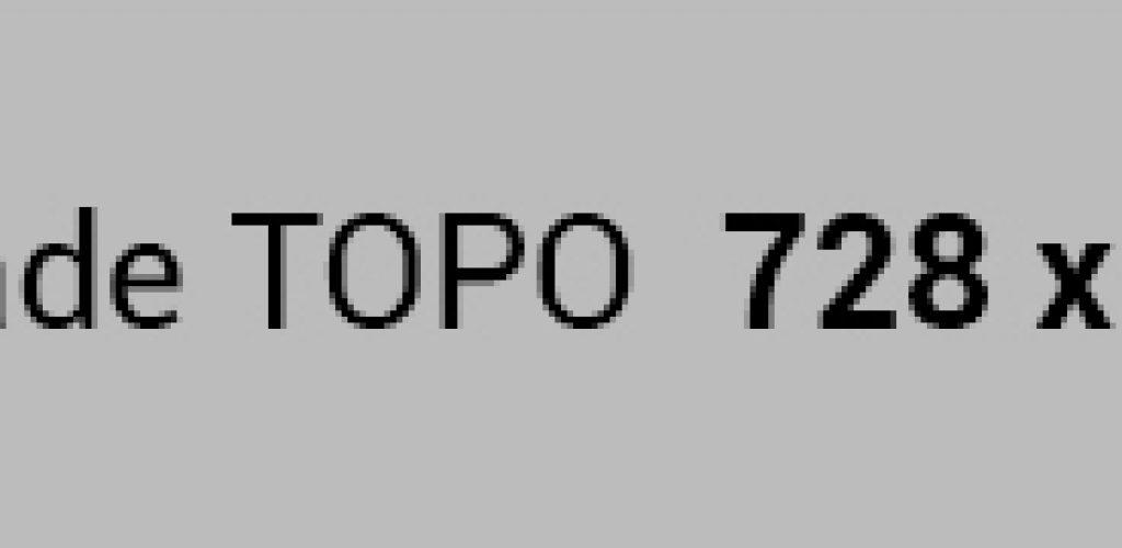 topo-728x90